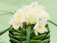 n_termeszetes_zold_eskuvo_nyiregyhaza_tarcal_debrecen_asztali_disz_orchidea